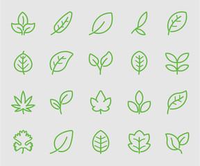 Leaf green line icon
