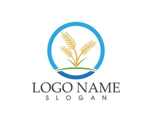 Rice,wheat agriculture logo design