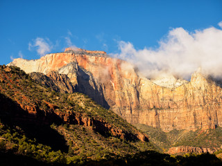 Beautiful view of Zion National Park in the morning, Utah