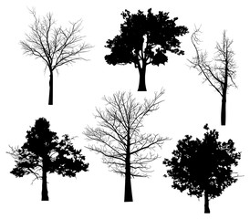 six trees black silhouettes isolated on white