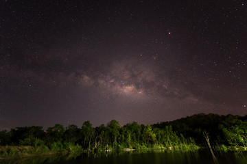 Forest with sky at night, Beautiful clear sky at night and many star, Bright star light with dark sky over swam and forest