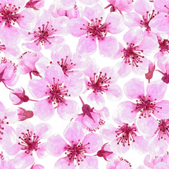 Cherry blossoms painted with watercolors, seamless pattern for design.