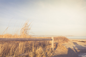 Wooden fence and dry grass in the sandy beach dunes