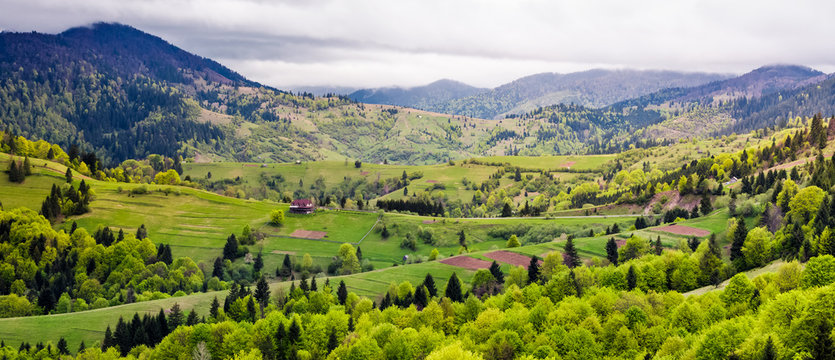 Panorama of Carpathian rural area in springtime. beautiful mountainous landscape on a cloudy day