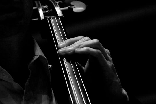 cello with fingers