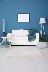 Modern room interior with cozy sofa and fluffy carpet