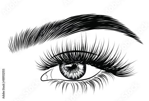 hand drawn woman s fresh luxurious eye with perfectly shaped