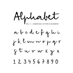 Hand drawn vector alphabet, font, isolated lower case letters and numbers written with marker or ink. Calligraphy, lettering.