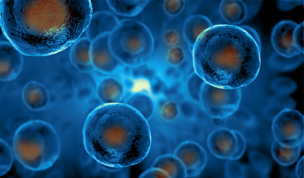 Embryonic stem cells , Cellular therapy , Regeneration , Disease treatment