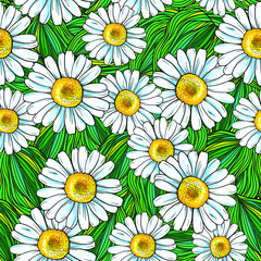 Vector pattern of flower and green. Repeat pattern. Chamomile.