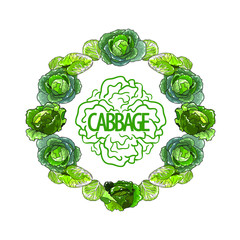 Vector round set of green cabbage with text in the middle. Isolated on white background.