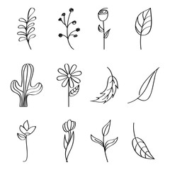 flowers cactus leaves branch berries outline image vector illustration