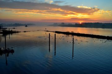 Sonnenaufgang an der Elbe bei Geesthacht