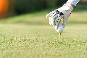 hand of woman golf playerpush wooden tee with golf ball on the grass tee off, to be ready for hit the ball to the fairway