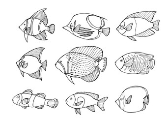 Hand drawn coral fish set. Isolated on white.