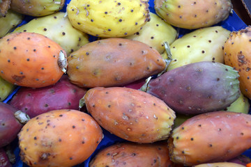 Prickly pear cactus on the market of Bolzano in South Tyrol - Italy.