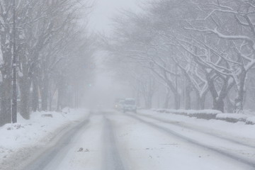 Snow road image
