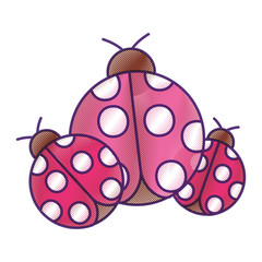 ladybugs insect small icon animal vector illustration drawing design