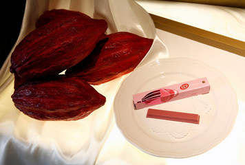 Nestle's KITKAT Chocolatory Sublime Ruby, made of pink 'Ruby' chocolate, is pictured with a mock cocoa bean during a photo opportunity at KITKAT Chocolatory shop in Tokyo