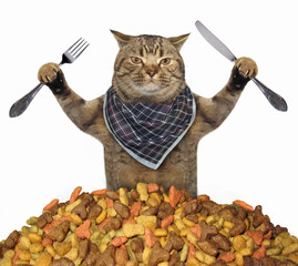 The cat with a knife and a fork is near a pile of dry food. White background.