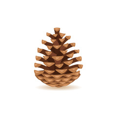 Pine cone isolated on white background. Vector illustration.