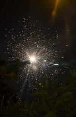 Fireworks Fire Flower