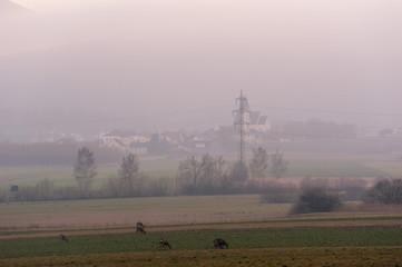 Abendlicher Nebel und Dunst