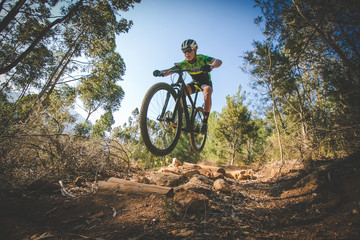 Wide angle view of a mountain biker speeding downhill on a mountain bike track in the woods Wall mural