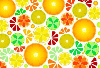citrus fruit. orange and lemon background. vector illustration