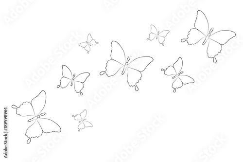 Schmetterlinge Zum Ausmalen Stockfotos Und Lizenzfreie Vektoren Auf