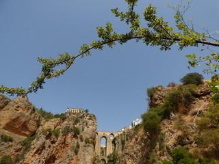 Ronda,municipio español perteneciente a la comunidad autónoma de Andalucía, situada en el noroeste de la provincia de Málaga  (España)