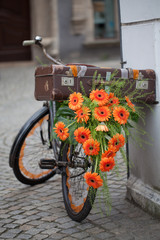 flowered retro bicycle decorated with orange flowers, gerberas