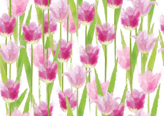 Seamless floral pattern, beautiful pink  tulips flowers  isolated.