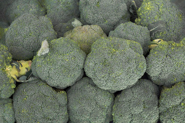 Broccoli background top view. Broccoli in a pile on a market supermarket. Brassica oleracea