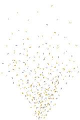 Konfettisprüher - gold-silber