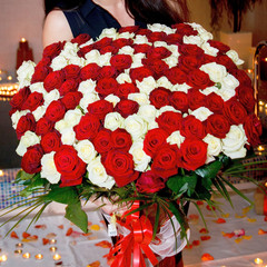 Wonderful and very big bouquet of fresh red and white roses for Valentine's day, March 8, Birthday etc.