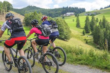 Fototapete - Mountainbiking im idyllischen Schwarzwald