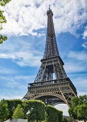 Eiffel Tower Portrait Daytime