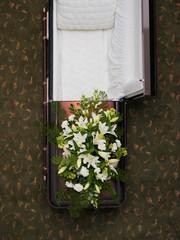 Overhead view of open empty coffin.