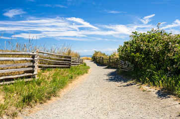 Empty Coast Path Lined with a Wooden Fence and  Blue Sky
