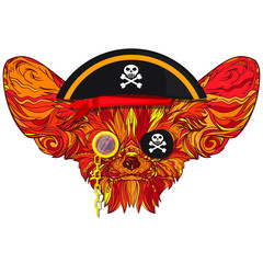 Vector face of pirate fox with big ears, pirate hat and monocle. Isolated on white background.