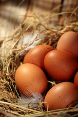 Hen organic eggs in the nest. On wooden rustic background.Closeup