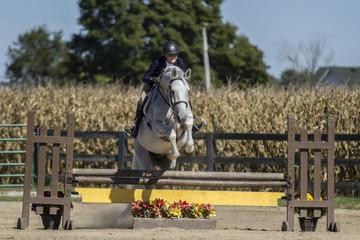 Woman jumping grey gelding