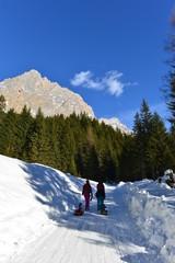Winterwanderung auf der Ehrwalder Alm Zugspitzarena