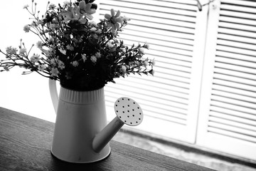 Flowers Decorated in Pots of Watering Shower, Vintage Tone