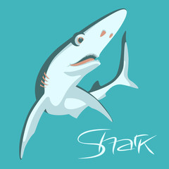 shark vector illustration flat style  profile view