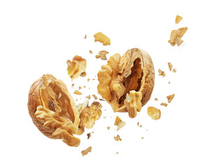 Walnut is torn to pieces on white background