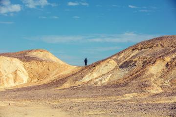 Desert landscape. Man standing on mountain in desert