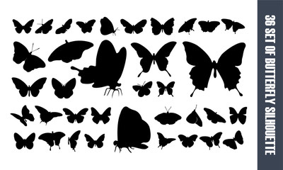 set of Beautiful Butterfly silhouette vector