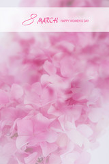 The international happy women's day on 8 March,with pink flower of hydrangea.Greeting card.